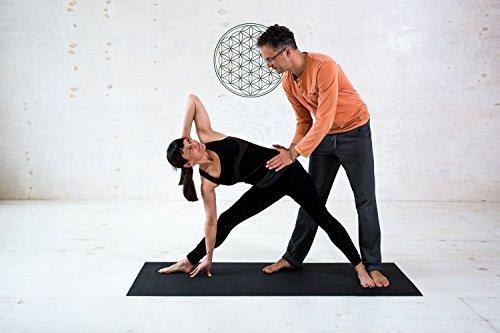 YOGABASICS: Das Yoga-Basisprogramm für einen gesunden Rücken (3 DVDs) - 6