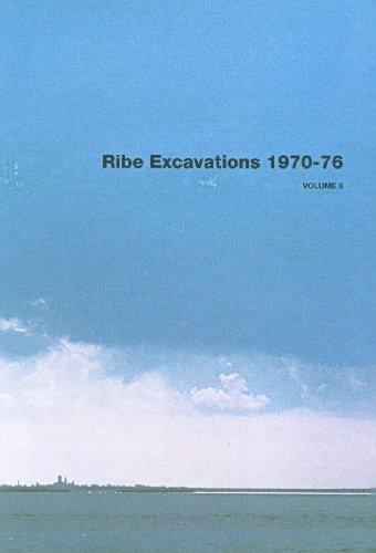 Ribe Excavations 1970-76, Volume 6 (Ribe Excavations - Jutland Archaeological Society, Band 75) 76 Gläser