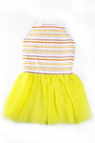 t Tutu Große Hunde Kleid von, XX-Large, Multi ()