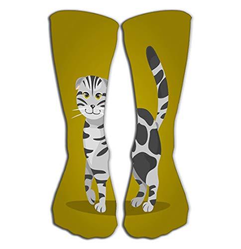 Xunulyn Hohe Socken Outdoor Sports Men Women High Socks Stocking Scottish fold cat Pedigree Green Background Tile Length 19.7