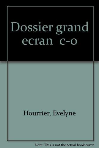 DOSSIER GRAND ECRAN. Informatique au baccalauréat professionnel