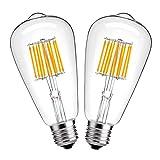 hzsane ST64Glühlampe 10W antik Edison Style LED Filament Glühbirne, Tageslichtweiß 6000K, 1000lm, E27Sockel Lampe, entspricht 100W Glühlampe, nicht dimmbar, 2er Pack, Glas, warmweiß 10.00W 230.00V