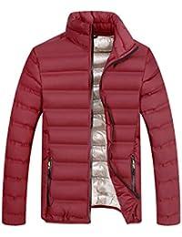BESBOMIG Wintermantel Herren Steppjacke Herren übergangsjacke Puffer Jacke  Winterjacke - Outdoorjacke Winter Jacke mit Stehkragen 8ce81567f3