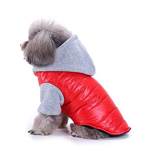 OHQ Hundemantel Wasserdicht Winterjacke Herbst Weste Pet Dog Coat Jacket Costüm Regenjacke Regenmantel Winter Warm für Hunde Mit Kapuze