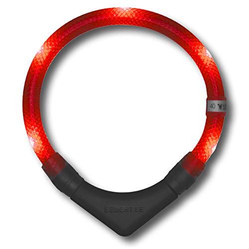 LEUCHTIE® Leuchthalsband Plus rot Größe 50 I LED Halsband für Hunde I 100 h Leuchtdauer I wasserdicht I enorm hell