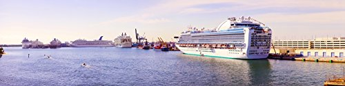 panoramic-images-ms-island-princess-cruise-ship-at-a-port-port-everglades-broward-county-florida-usa