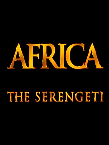 Africa - The Serengeti Geparden Natur