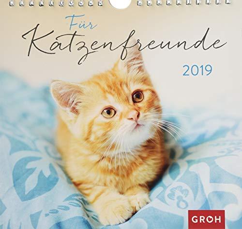 Für Katzenfreunde 2019: Dekorativer Wandkalender mit Monatskalendarium | Maße (BxH): 21x20cm