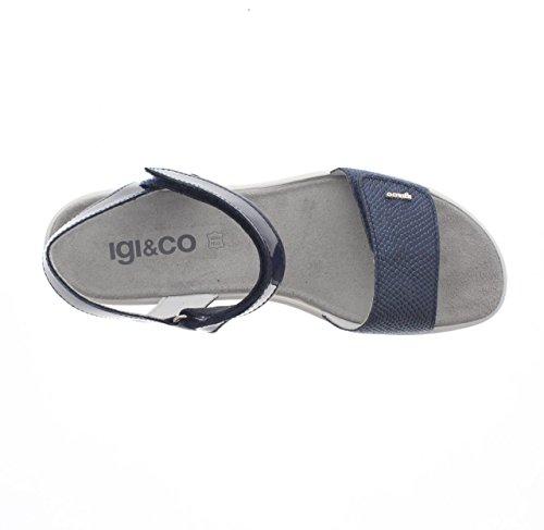 IGI & CO 7821 blu - 800