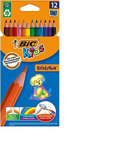 Bic Kids - 9078322 - Evolution - Crayons de Couleur - Etui de 12 - Modèle Aléato