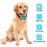 Best Bark Collars - Yoyun Dog Anti Bark Collar, Stop Dogs Barking Review