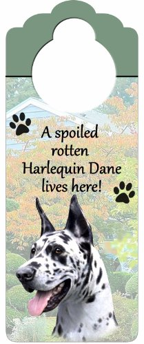 E&S Pets Harlequin Dane Holz Zeichen A Spoiled Rotten Harlequin Dane Lives Here mit kunstvollen Foto á 10von 10,2cm kann auf Türen oder überall aufgehängt Werden in Home -
