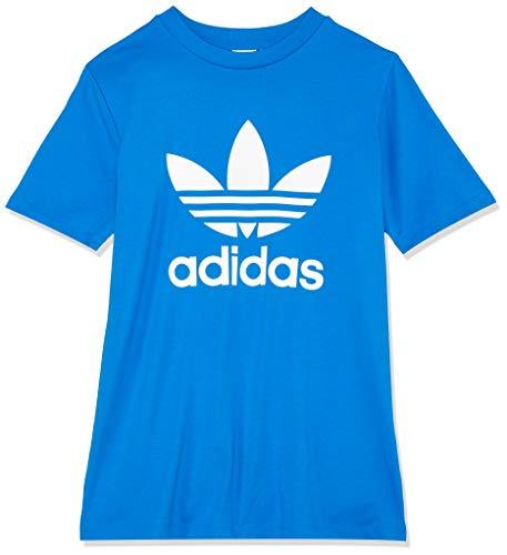 Adidas trefoil, t-shirt donna, bluebird, 40