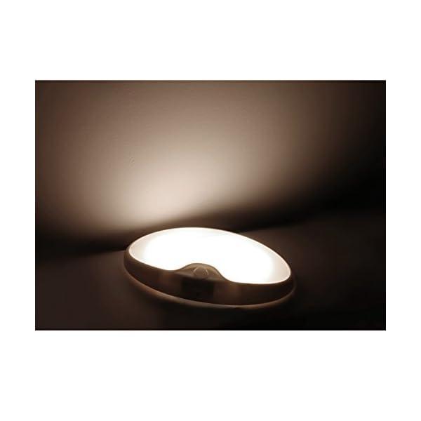 Dream Lighting LED Lights 12volts Modern Simple Interior Ceiling Light for Caravan Motorhome Boat Yacht 3500K Pack of 2