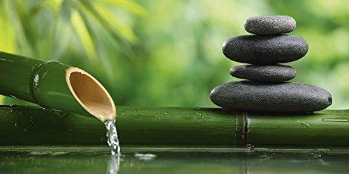 Home-design-glas-skulptur (Artland Qualitätsbilder | Glasbilder Deko Glas Bilder 100 x 50 cm Spa Stillleben mit Bambus und Zen Steinen D8PD)