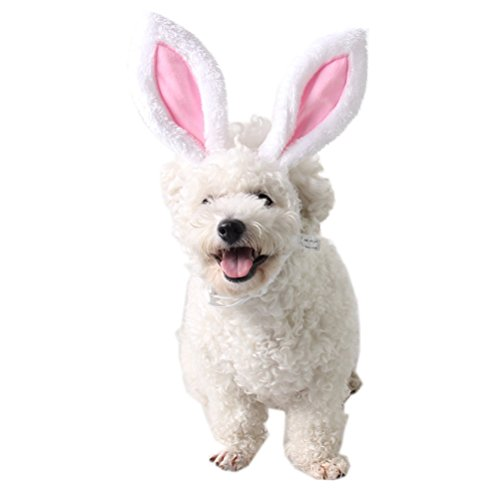 Welpen Tragen Kostüm - Amosfun Hunde Katze Welpen Haarschmuck Ostern Headwear Ostern Dekoration Kaninchen Stirnband Kostüm Cosplay Haarschmuck Für Party Haustier Tragen - Größe S