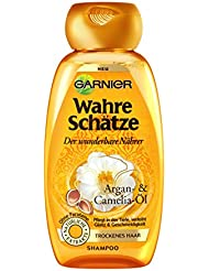 Garnier Wahre Schätze Shampoo Glanz & Geschmeidigkeit, 1er Pack (1 x 250 ml)