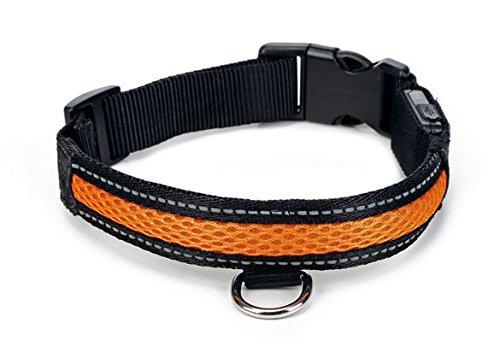 LED Leuchthalsband Hundehalsband Sicherheitshalsband für Hunde mit USB aufladbar 36-51cm x 2,5cm Orange