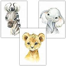 Suchergebnis Auf Amazon De Fur Safari Bilder