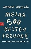 Meine 500 besten Freunde: Roman