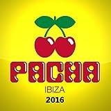 Pacha 2016