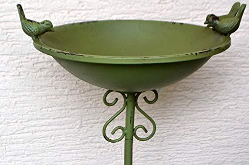 Maison en France Schale- hübsche Vogeltränke - Vogeltränke mit 3 Vögel- H=110 cm- Stabiler Gartenstecker mit hübsche Vogeltränke, grün