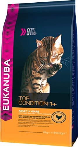 Eukanuba Katze Top Condition, Premium Trockenfutter mit hohem Fleischanteil für erwachsene Katzen 4Kg