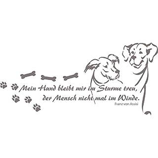 Schilder Mit Spruche Hunde Dein Burobedarf De