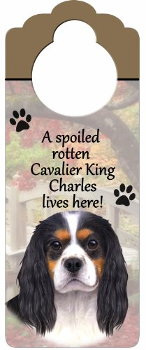 E&S Pets King Charles, Tri Farbe Holz Zeichen A Spoiled Rotten King Charles, Tri Farbe Lives Here mit kunstvollen Foto á 10von 10,2cm kann auf Türen oder überall aufgehängt Werden in Home -