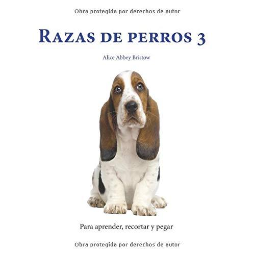 Razas de perros 3 (Para aprender, recortar y pegar)