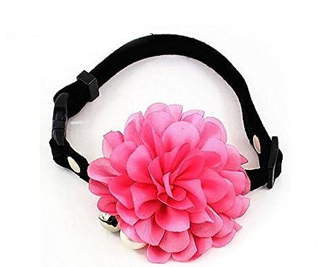 Dogs Kingdom fait main fleur Bell Nœud Papillon–Collier Femme–Perle–Perle pour chat et pour chien Pet