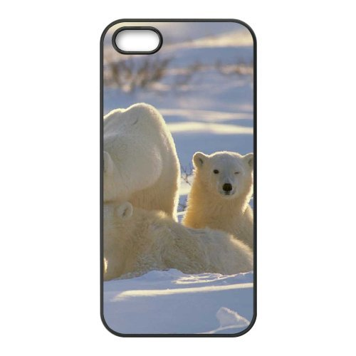 LP-LG Phone Case Of Polar Bear For iPhone 5,5S [Pattern-6] Pattern-1