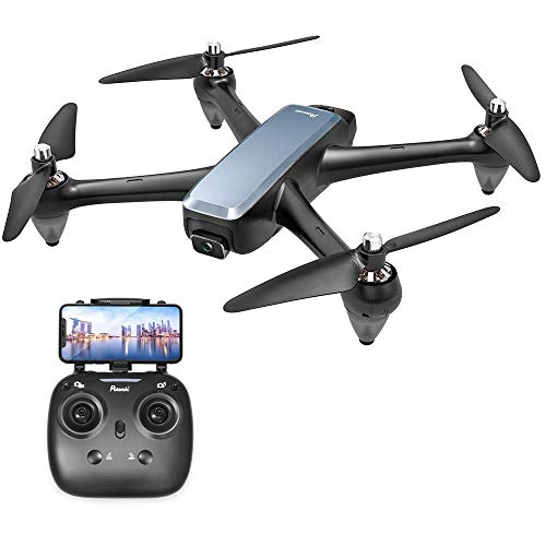Potensic Brushless FPV GPS Drohne mit 1080P Kamera, GPS RC Drohne D60, Live-Video, RC Quadrocopter mit Bürstenlose Motoren, Follow-Me-Funktion und 5G-WLAN-Übertragung für Anfänger und Experte