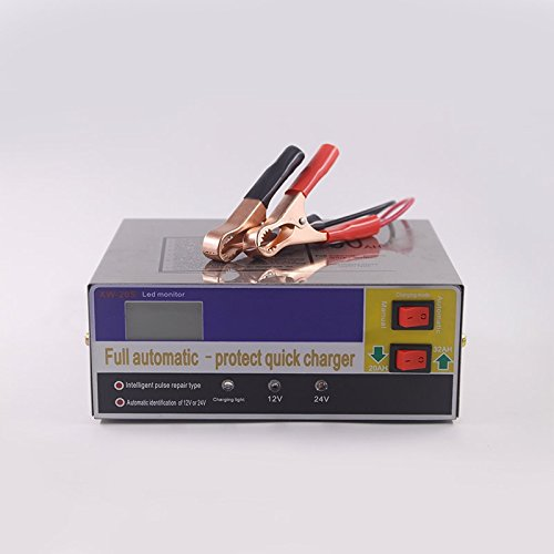 LanLan Caricabatteria Mantenitore,Caricabatteria automatico da 110 V 220 V a 12V 24 V Tipo di riparazione a impulsi intelligente R