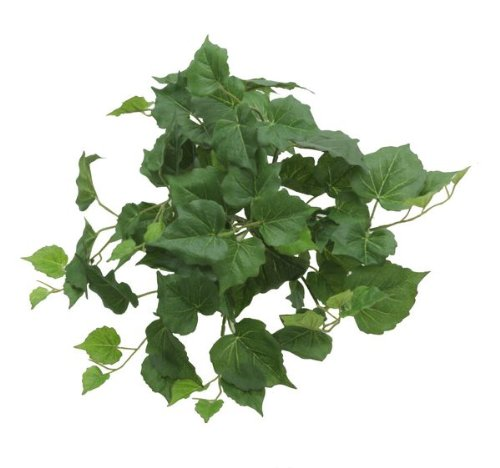 Renaissance 2000Deko-Pappel Leaf Bush, 33cm, farn grün