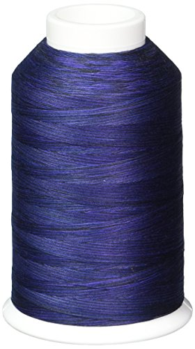 YLI 2443025V 3-Ply Machine Cotton Quilting Variegated Thread, 3000 yd, Royalty by YLI