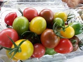 Gemüsesamen und bunten Tomatensamen Kleine Frucht süß eingetopft 5 Gramm / bag