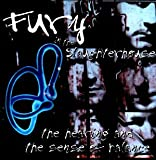 Songtexte von Fury in the Slaughterhouse - The Hearing and the Sense of Balance
