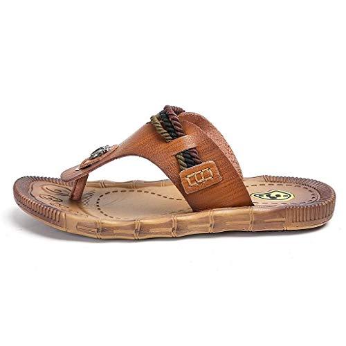 MNmkjgfgj Herrenmode Casual Runde Zehe Solide Lace-Up Canvas Schuhe Board Schuhe Niedrige Schuhe (Color : Braun, Size : 43 EU) - Braun Canvas Lace Up Schuhe