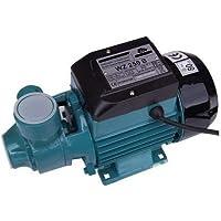Pompe d'arrosage POMPE DE JARDIN pour puits 250 W 35l/min pompe à eau de surface