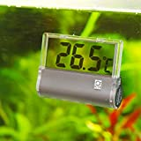 JBL 6122000 Aquarium Thermometer DigiScan, grau