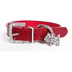 DogPets Collar de Cuero para Perro pequeño (Talla S). Collar Ajustable Entre 18 y 25 cm de Cuello. (Rojo)