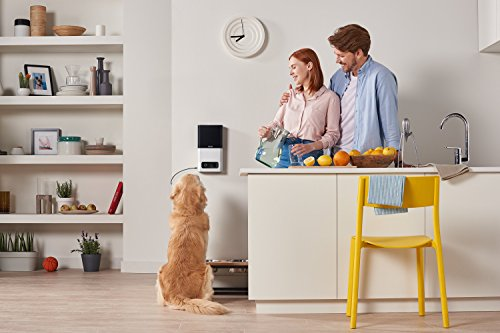 Petcube Bites Wi-Fi Pet Camera With Treat Dispenser: 2-Way Audio, HD 1080p Video And Night Vision, For Monitoring Your Dog Or Cat. Compatible with Alexa. 5