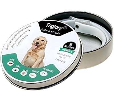 Flea and Tick Collars for Dogs / 8 Months Protection/Waterproof & Nature & Safe / 25 inches/Fits Small Medium Large Dogs and Cats by Taglory