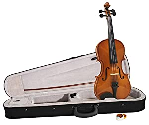 Windsor Violin Package