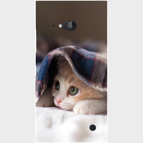 Casotec Sleepy Kitten Design Hard Back Case Cover for Nokia Lumia 730