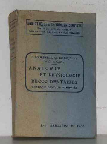 Anatomie et physiologie bucco-dentaires