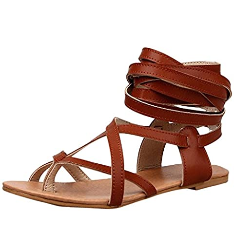 Oasap Women's Fashion Lace-up Flat Thong Sandals, Brown EURO39/US8/UK6