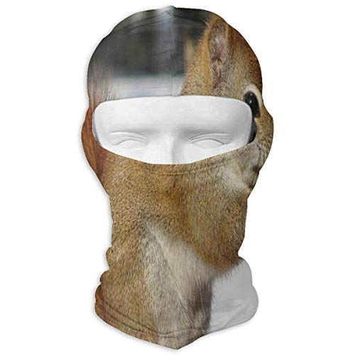 Hoklcvd Balaclava Starry Night Maple Leaf Moon Full Face Masks Ski Motorcycle Neck Hood Unisex9
