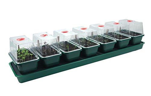 Britten & James® Propagateur à Arrosage Automatique pour Plantes avec Plateau de Réservoir, Plateforme, Tapis Capillaire et 7 Mini Plateaux de Semences avec Couvercles Dégagés et Aérés